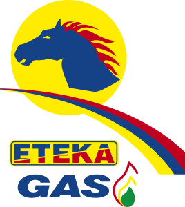 LOGO GAS NS